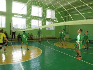 Первенство Орловского района по волейболу среди юношей